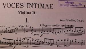 Voces_intimae_leikattu